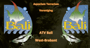 ATV Bali - Aquarium  Terrarium Vereniging in West Brabant